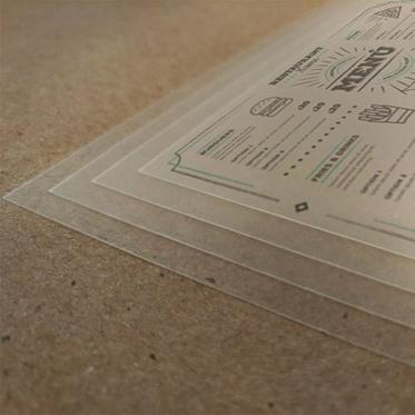 LEN33T -  Individual de Mesa em PVC translúcido
